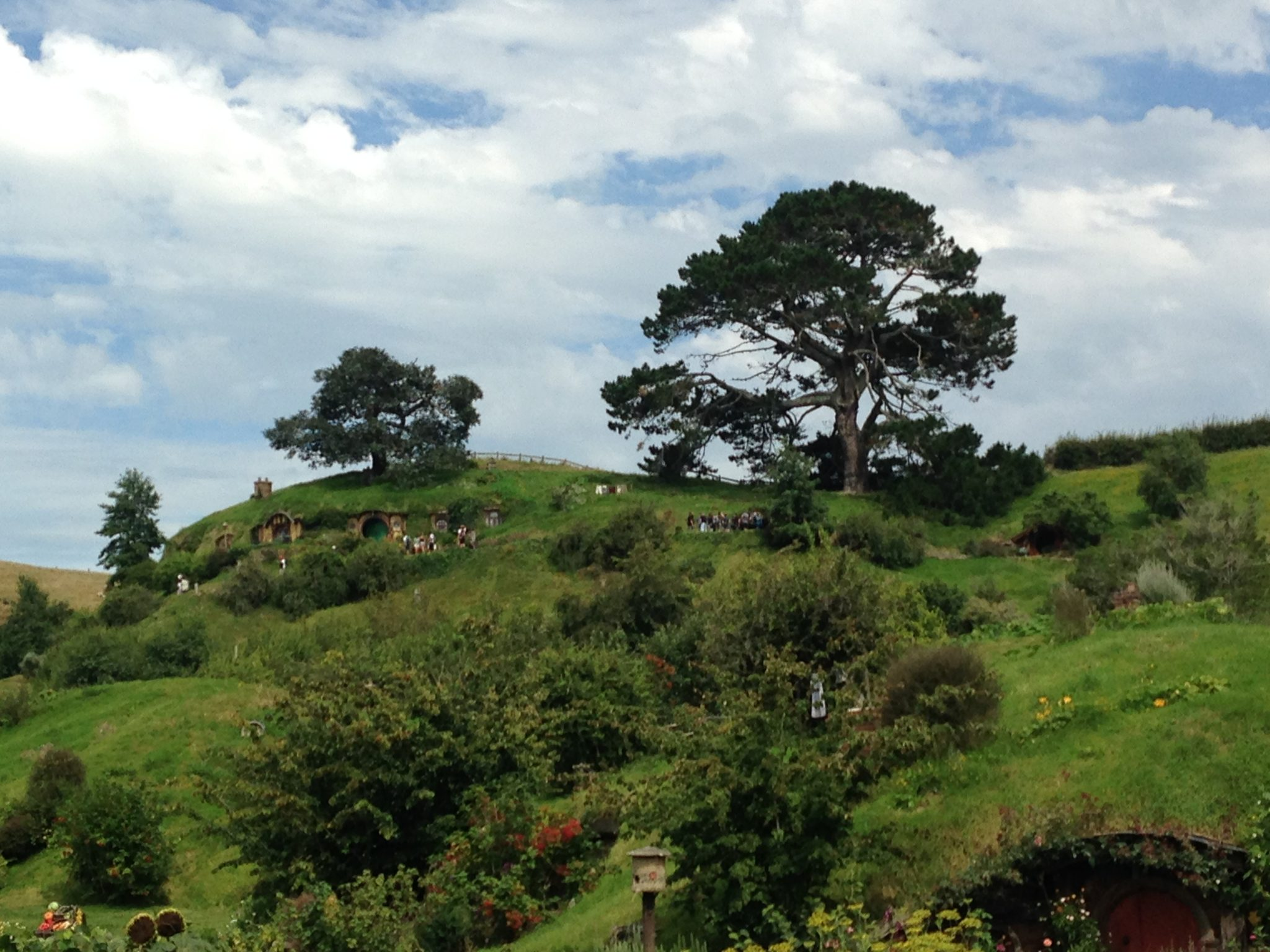 The Shire, Bilbo Baggins, Hobbiton Movie Set, New Zealand.