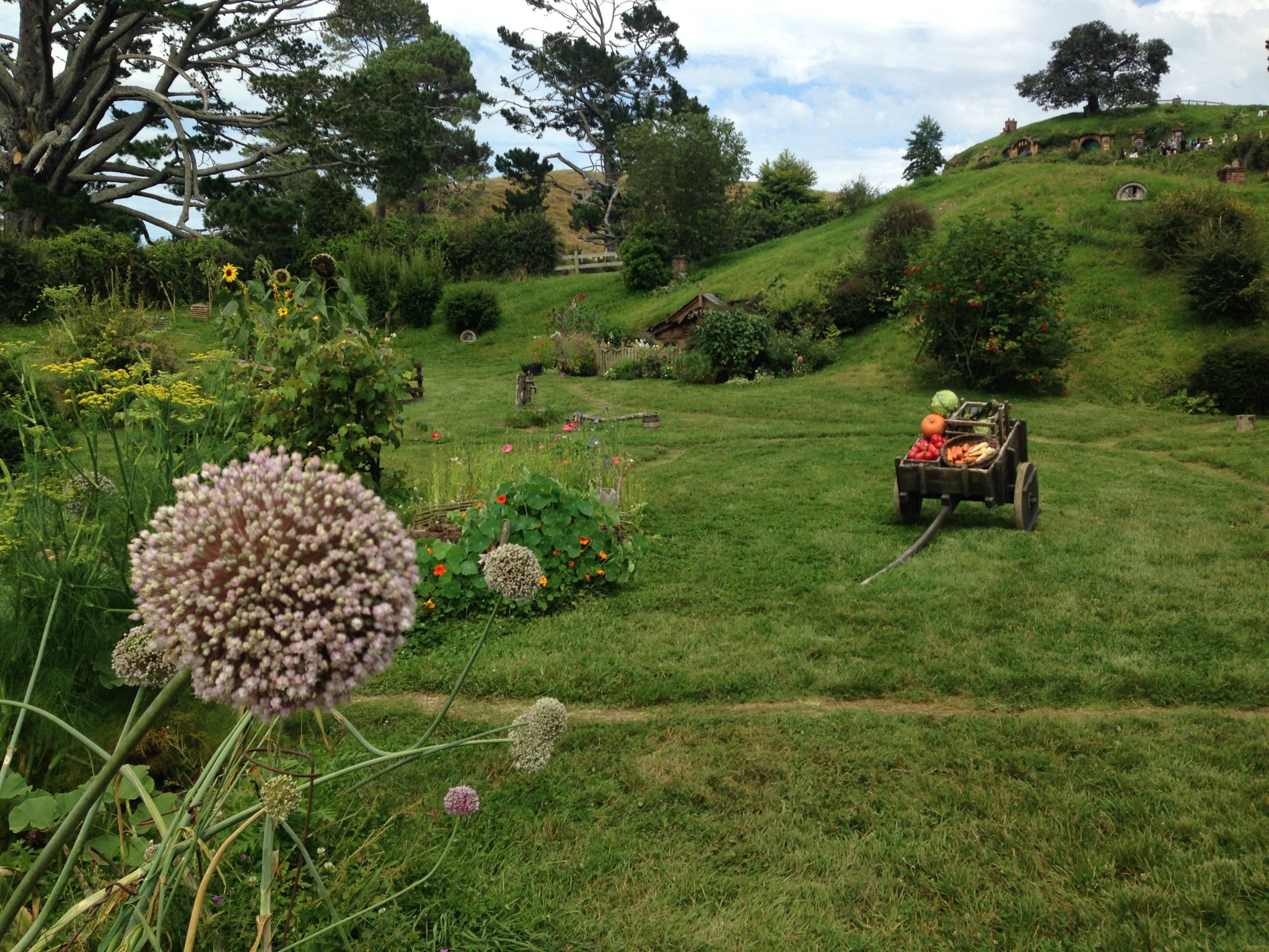 Garden, Hobbiton Movie Set, New Zealand.