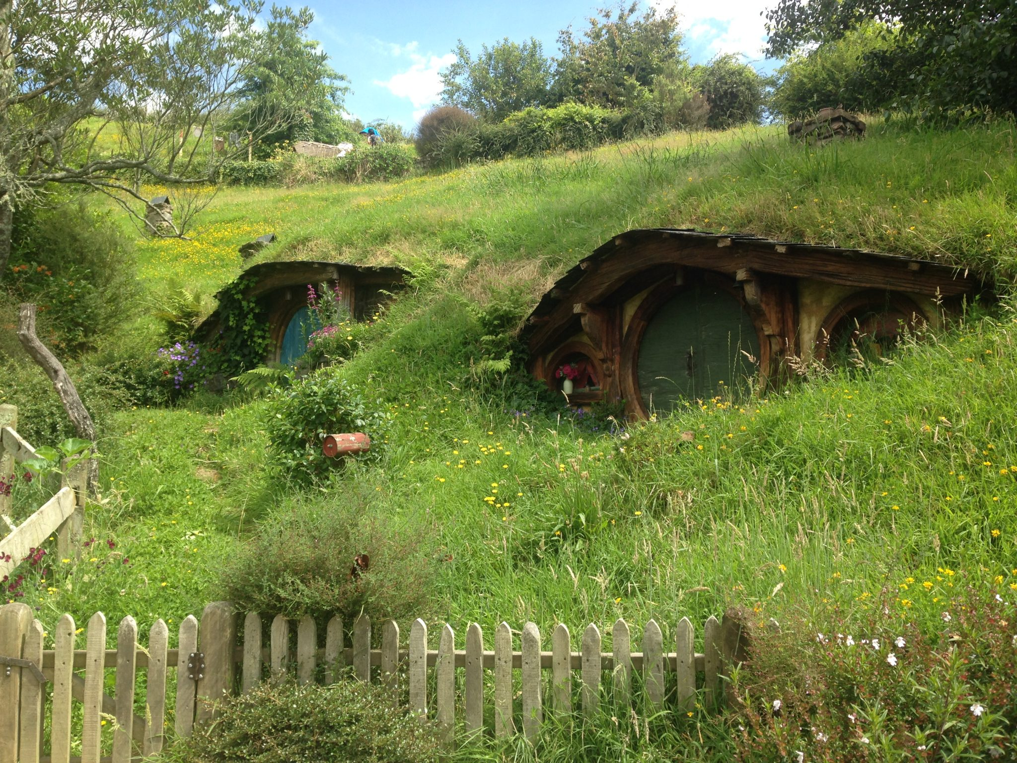 Hobbit holes, Hobbiton Movie Set, New Zealand.
