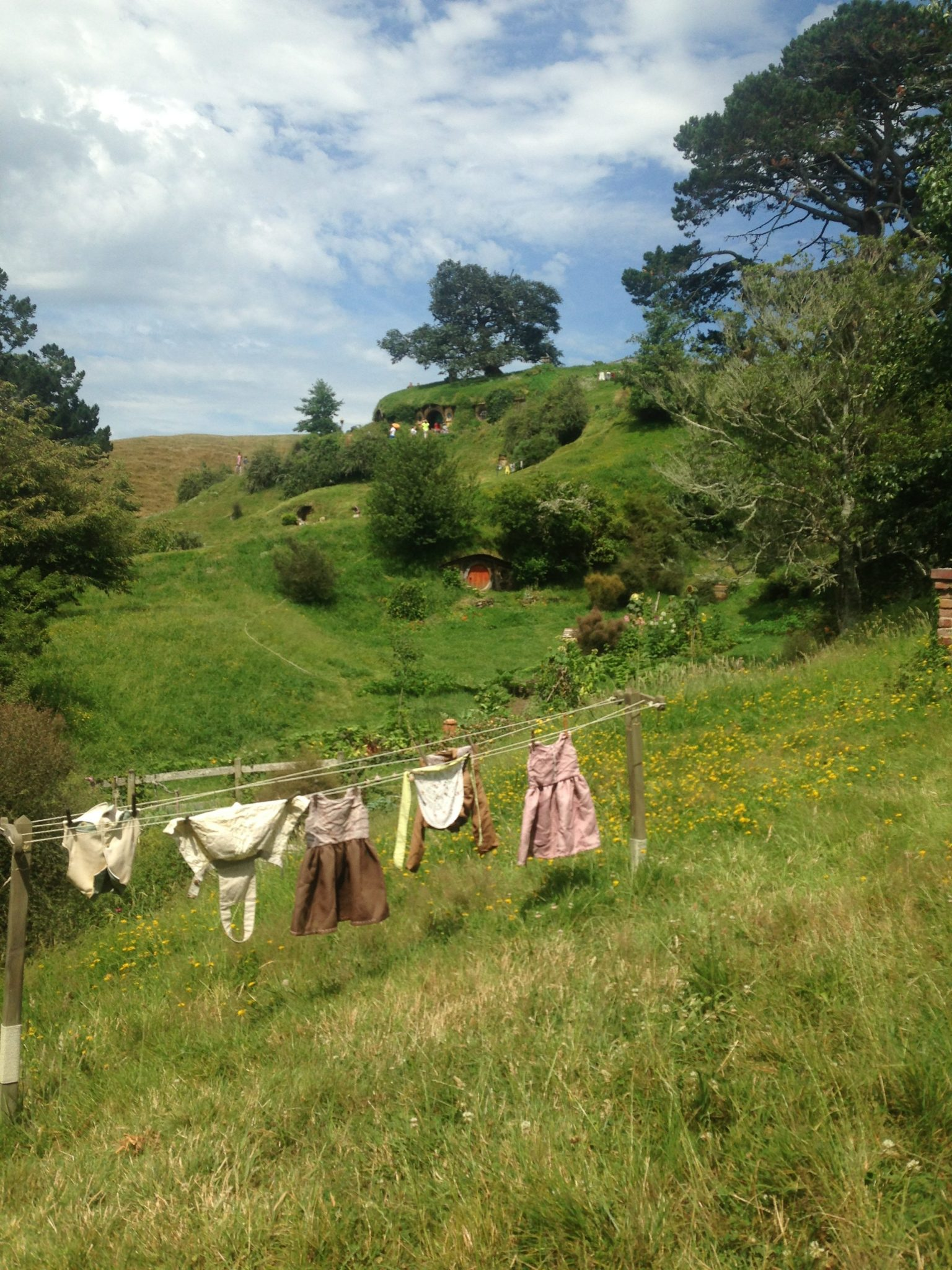 Attention to detail, the Shire, Hobbiton Movie Set, New Zealand.
