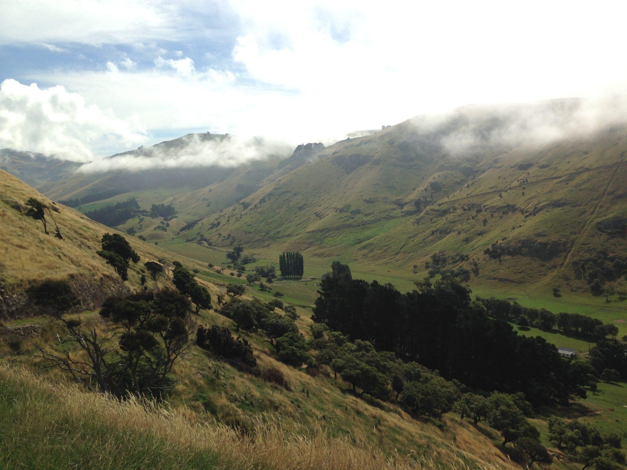 valley in Lavericks Bay, Banks Peninsula, New Zealand.