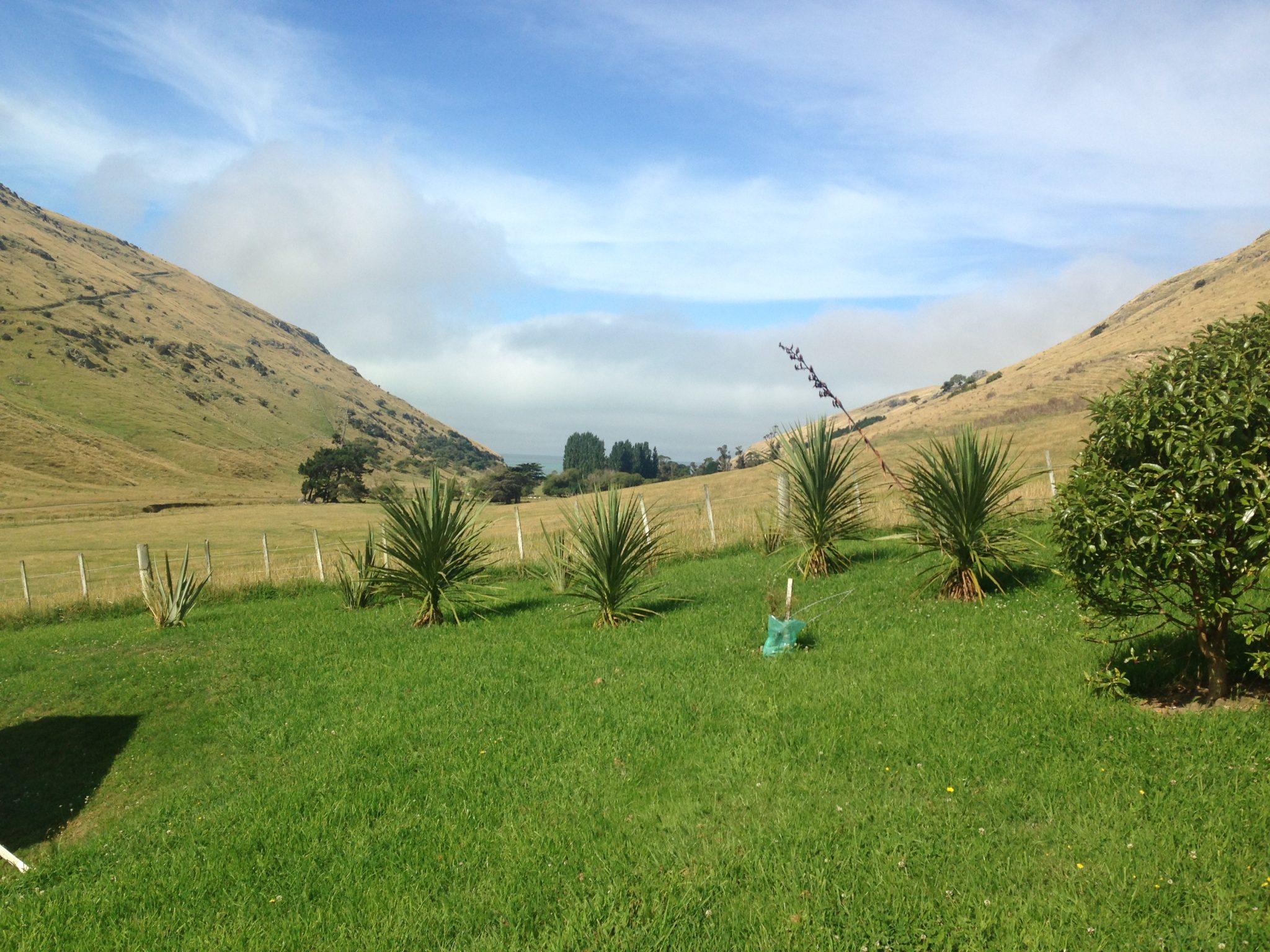 Canopy Camping Escape's Lavericks Bay , Banks Peninsula, New Zealand.