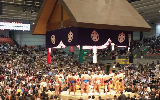 The Sumo Tournament